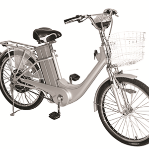Ztech E-bike